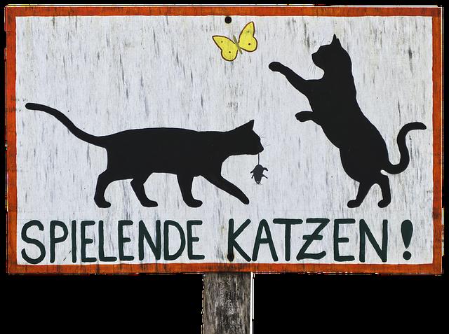 upozornění na kočky.png